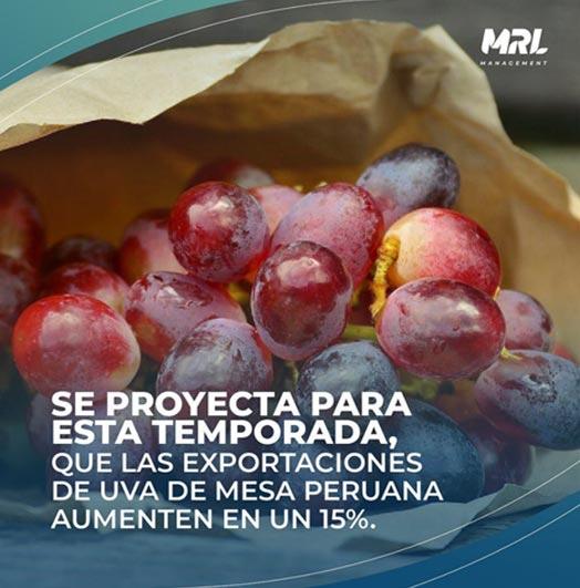 Exportaciones de Uva de Mesa